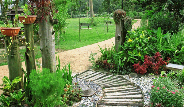 Amenajari gradini spatii verzi borduri decorative curbe Plante decorative